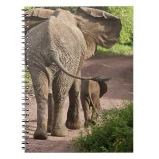 Africa. Tanzania. Elephant mother and calf at Spiral Notebook