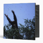 Africa, Tanzania, Glitter reaches for flying 3 Ring Binder