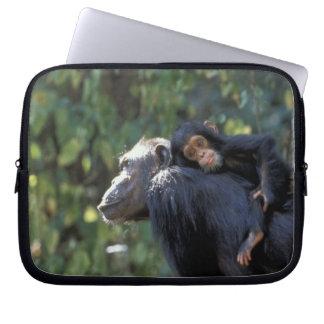 AFRICA, Tanzania, Gombe NP, Chimpanzees.  Female Laptop Computer Sleeves