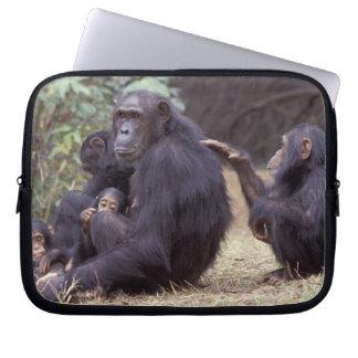 Africa, Tanzania, Gombe NP Infant female Laptop Sleeve