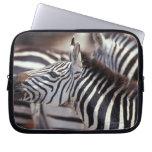 Africa,Tanzania,herd of zebras Laptop Computer Sleeves