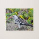 África. Tanzania. Hornbill Rojo-cargado en cuenta  Rompecabeza Con Fotos