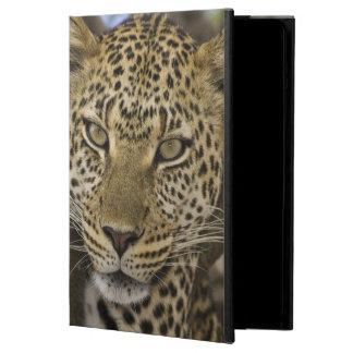 África. Tanzania. Leopardo en árbol en Serengeti