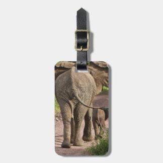 África. Tanzania. Madre y becerro del elefante en Etiquetas Para Maletas