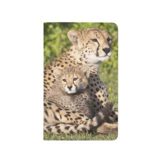 África. Tanzania. Madre y cachorros 2 del guepardo Cuaderno