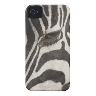 'Africa, Tanzania, Ngorongoro Conservation Area' Case-Mate iPhone 4 Case