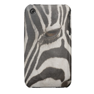 Africa, Tanzania, Ngorongoro Conservation Area iPhone 3 Case-Mate Cases