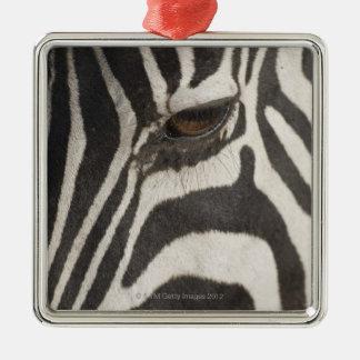 'Africa, Tanzania, Ngorongoro Conservation Area' Metal Ornament