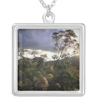 Africa, Tanzania, Ngorongoro Conservation Area, Silver Plated Necklace
