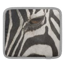 Africa, Tanzania, Ngorongoro Conservation Area Sleeve For iPads