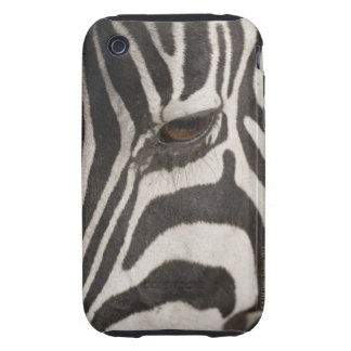 Africa, Tanzania, Ngorongoro Conservation Area Tough iPhone 3 Cover
