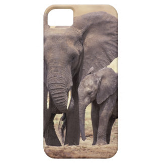 África, Tanzania, parque nacional de Tarangire. 2 iPhone 5 Fundas