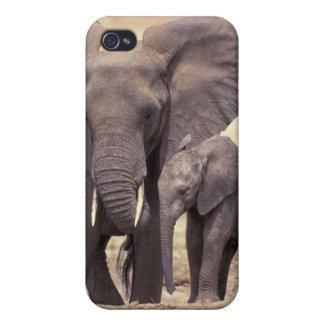 África, Tanzania, parque nacional de Tarangire. 2 iPhone 4/4S Fundas
