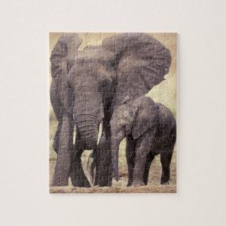 África, Tanzania, parque nacional de Tarangire. 2 Puzzle Con Fotos