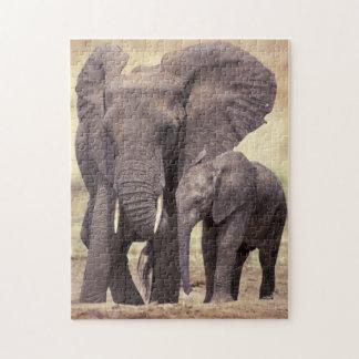 África, Tanzania, parque nacional de Tarangire Puzzles