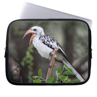 Africa, Tanzania, Red-billed Hornbill (Tockus Laptop Sleeves