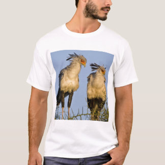 Africa. Tanzania. Secretary Birds at Ndutu in T-Shirt