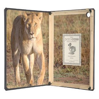 África, Tanzania, Serengeti. León y leona