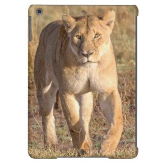 África, Tanzania, Serengeti. León y leona Funda Para iPad Air