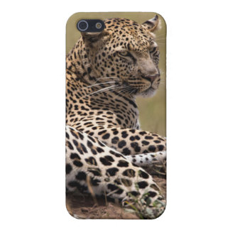 Africa, Tanzania, Serengeti. Leopard Covers For iPhone 5