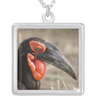 Africa, Tanzania, Southern Ground Hornbill Square Pendant Necklace