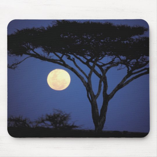Africa, Tanzania, Tarangire. Acacia tree in Mouse Pad
