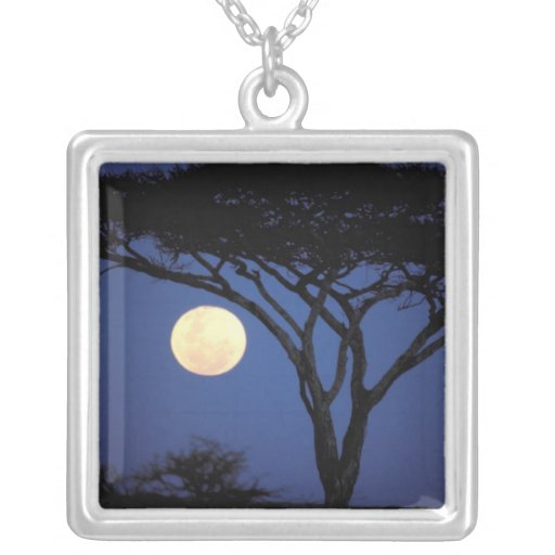 Africa, Tanzania, Tarangire. Acacia tree in Personalized Necklace