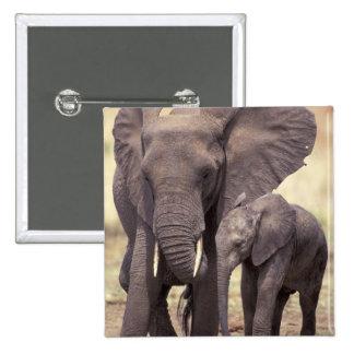 Africa, Tanzania, Tarangire National Park. 2 Button