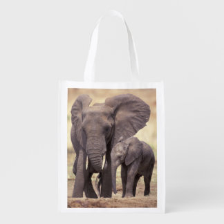 Africa, Tanzania, Tarangire National Park. 2 Grocery Bag