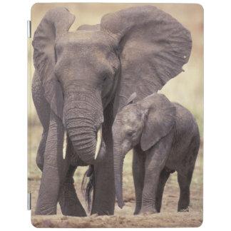 Africa Tanzania Tarangire National Park 2 iPad Cover