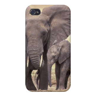Africa, Tanzania, Tarangire National Park. 2 iPhone 4 Covers