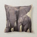Africa, Tanzania, Tarangire National Park. 2 Pillow