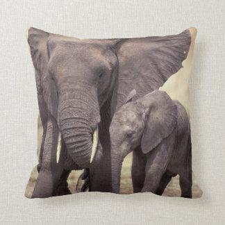 Africa, Tanzania, Tarangire National Park. 2 Throw Pillow