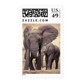 Africa, Tanzania, Tarangire National Park. 2 Stamps