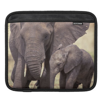 Africa, Tanzania, Tarangire National Park. 2 Sleeve For iPads