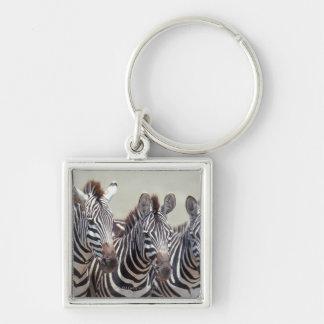 Africa, Tanzania, zebras Keychain