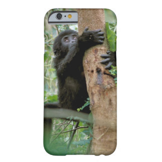 África, Uganda, bosque impenetrable de Bwindi Funda De iPhone 6 Barely There