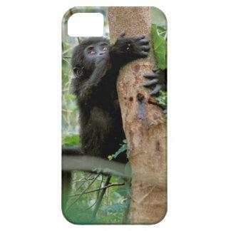 Africa, Uganda, Bwindi Impenetrable Forest iPhone SE/5/5s Case