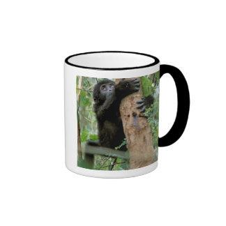 Africa, Uganda, Bwindi Impenetrable Forest Coffee Mug