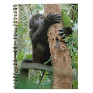 Africa, Uganda, Bwindi Impenetrable Forest Notebook