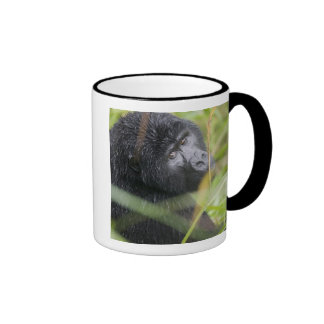 Africa, Uganda, Bwindi Impenetrable National 2 Coffee Mug