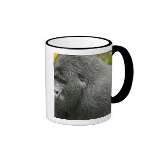 Africa, Uganda, Bwindi Impenetrable National 4 Mug