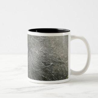 Africa, Uganda, Bwindi Impenetrable National 4 Coffee Mugs