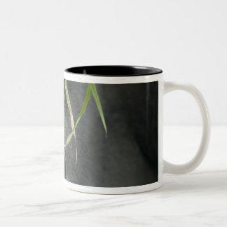 Africa, Uganda, Bwindi Impenetrable National 6 Coffee Mug