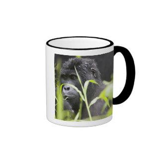 Africa, Uganda, Bwindi Impenetrable National Coffee Mugs