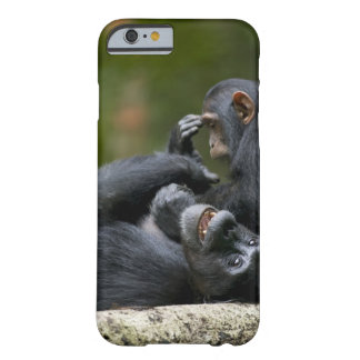 Africa, Uganda, Kibale Forest Reserve, Juvenile 2 Barely There iPhone 6 Case