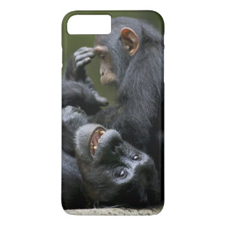 Africa, Uganda, Kibale Forest Reserve, Juvenile 2 iPhone 7 Plus Case