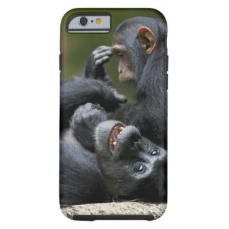 Africa, Uganda, Kibale Forest Reserve, Juvenile 2 Tough iPhone 6 Case