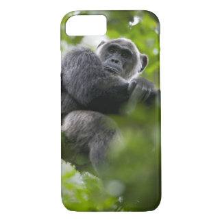 Africa, Uganda, Kibale Forest Reserve, Portrait 2 iPhone 7 Case