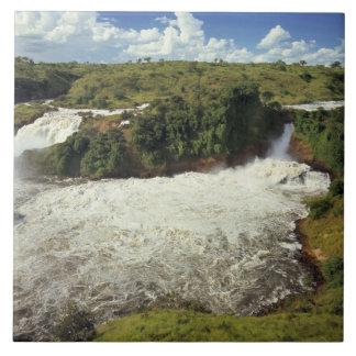 África, Uganda, las cataratas Murchison NP. El esp Teja Cerámica